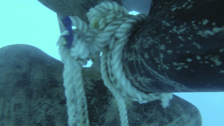 Line, ropes, chain in the propeller