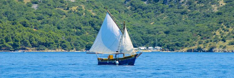 Kvarner cruise: Lateiner fishing
