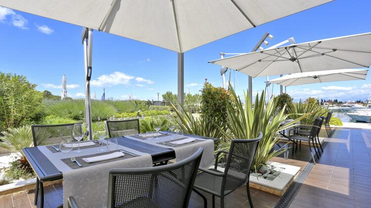 Olive Island Marina: Terrasse