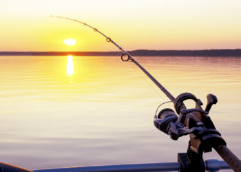 Fishing from the yacht in Croatia: permits and required