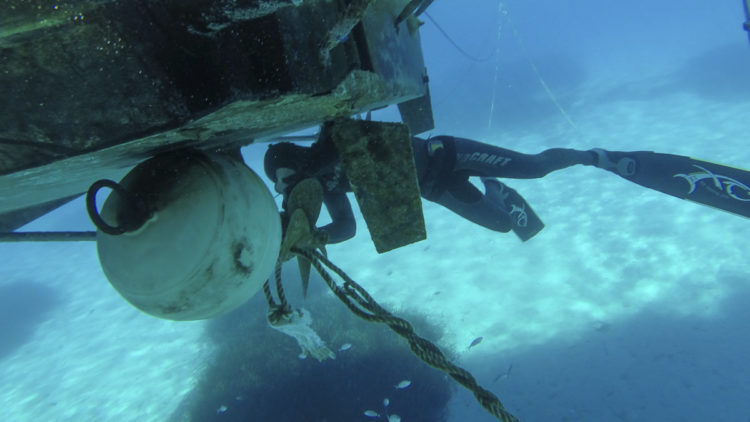 SeaHelp Service: Remove lines, ropes, etc. from the propeller