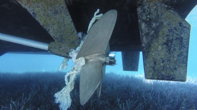 SeaHelp Leistung: Leinen vom Propeller entfernen