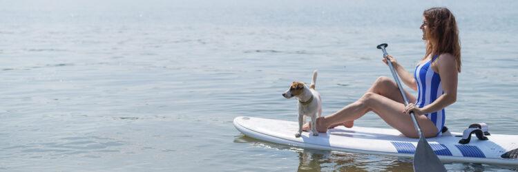 Haustier an Bord: stand up paddle mit dem Hund in der Bucht
